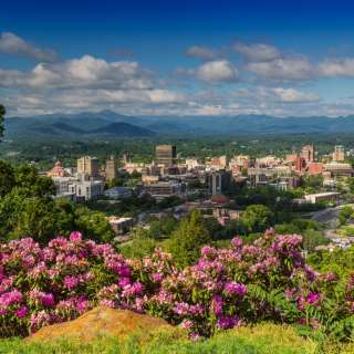 skyline of downtown Asheville framed by rhododendron