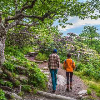 A couple hikes the Craggy Gardens Pinnacle Trail near Asheville, NC