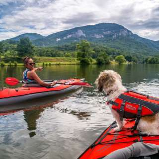 Woman kayaking on lake with dog