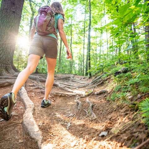 Asheville Hike Finder