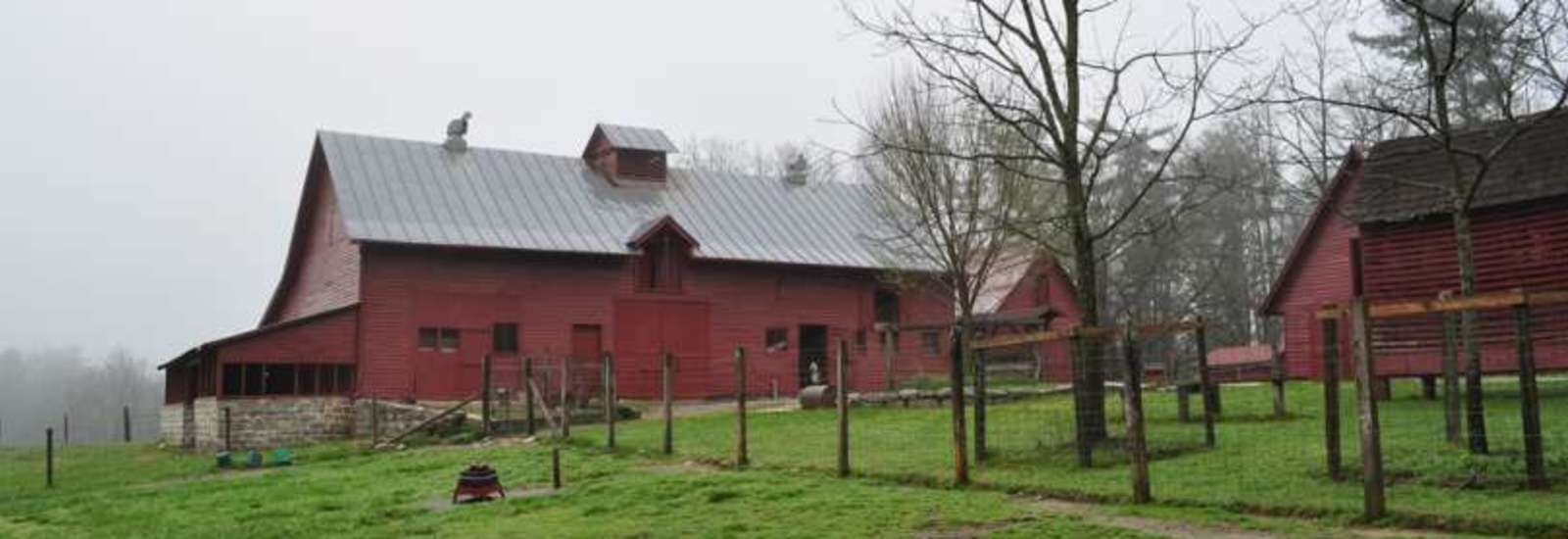 Barns at Carl Sandburg's Home