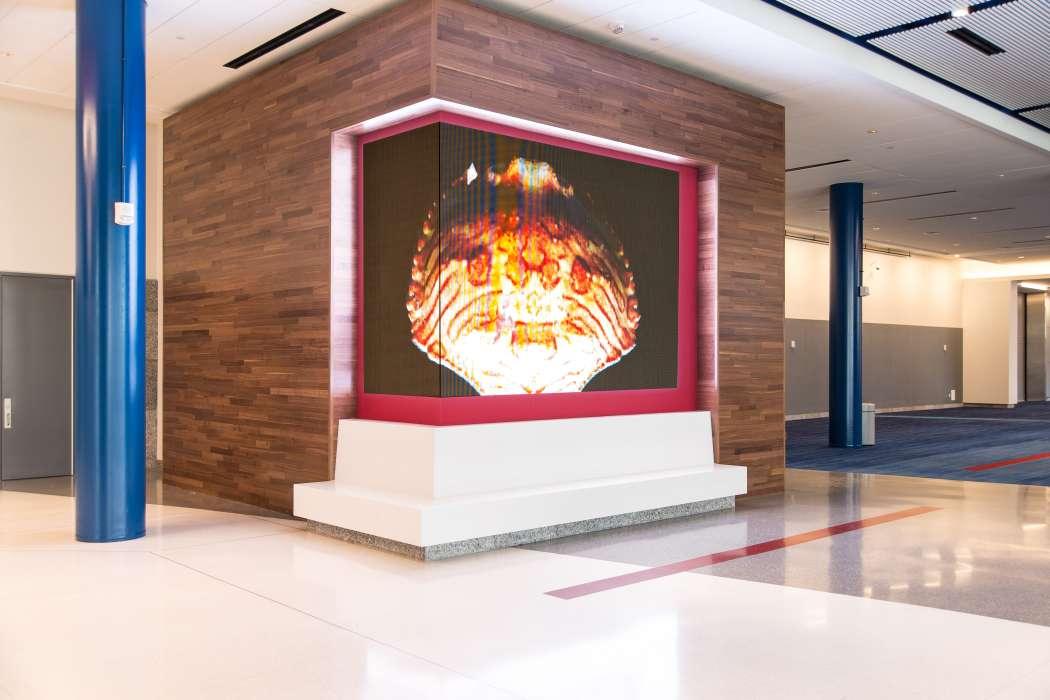 Lobby Video Board