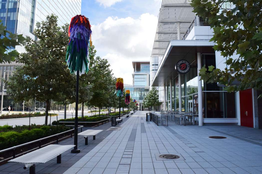 Color Condition in Avenida Houston