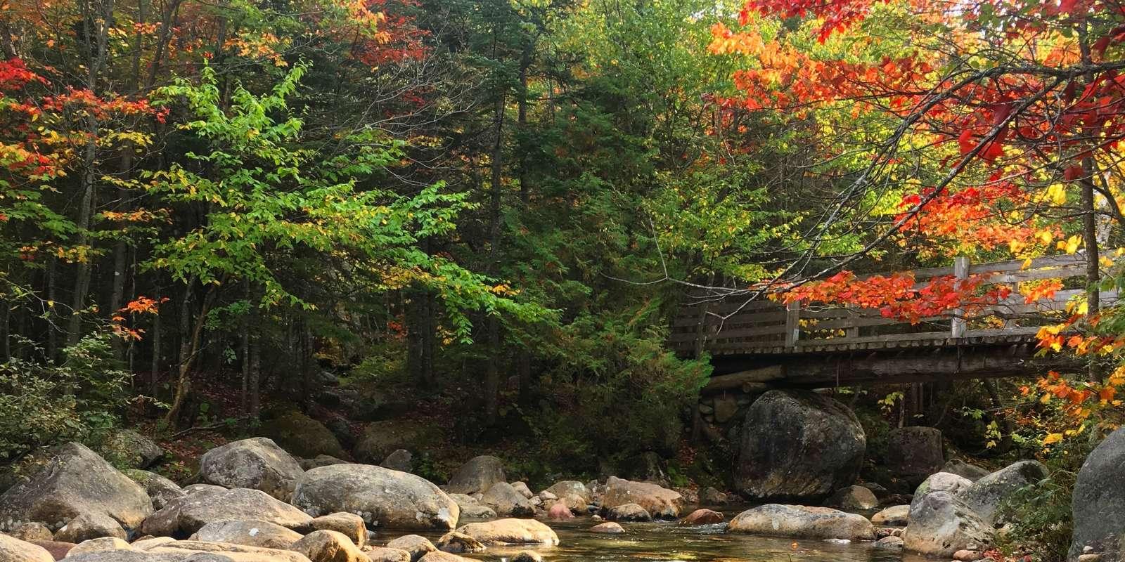 Fall Foliage - Maine Tourism Association