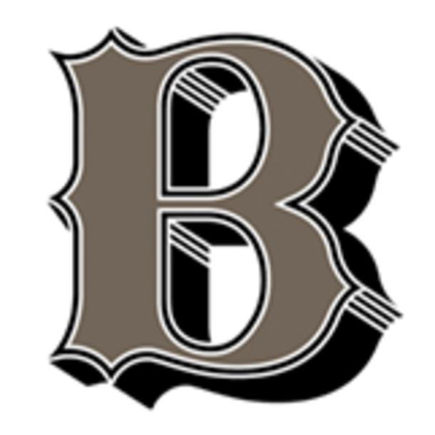 Bond Design logo