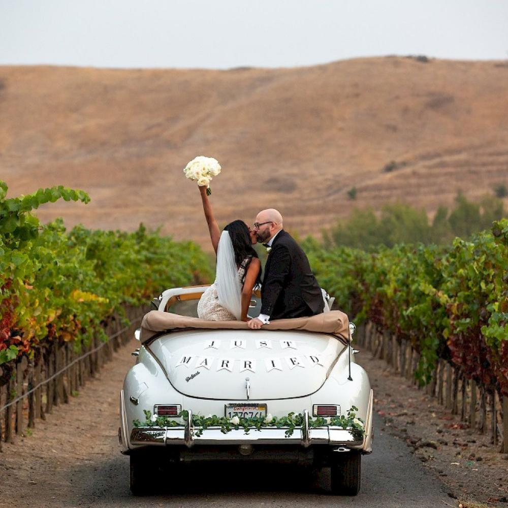 Just Married couple in Napa Valley vineyards