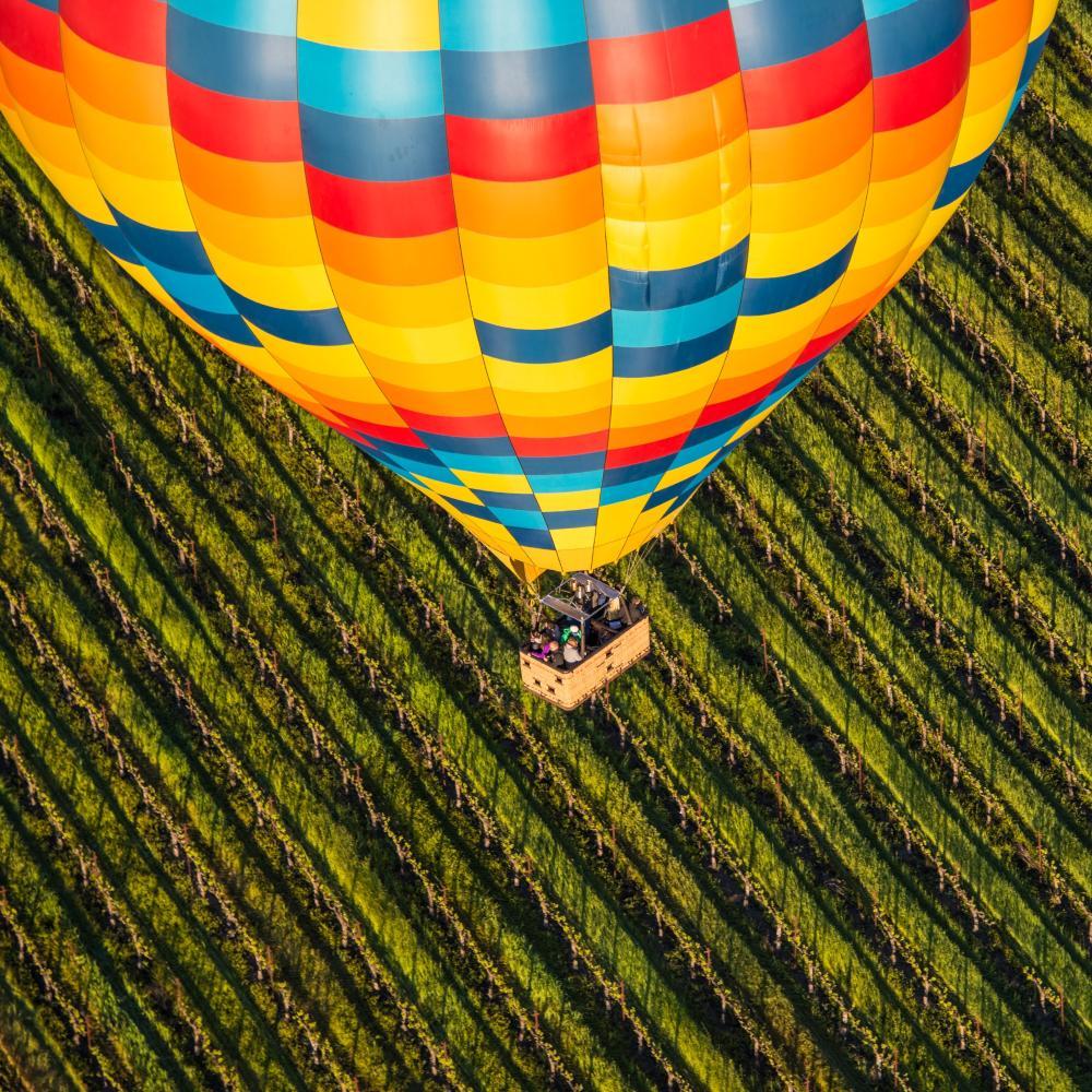 Hot Air Balloon and Napa Valley vineyard