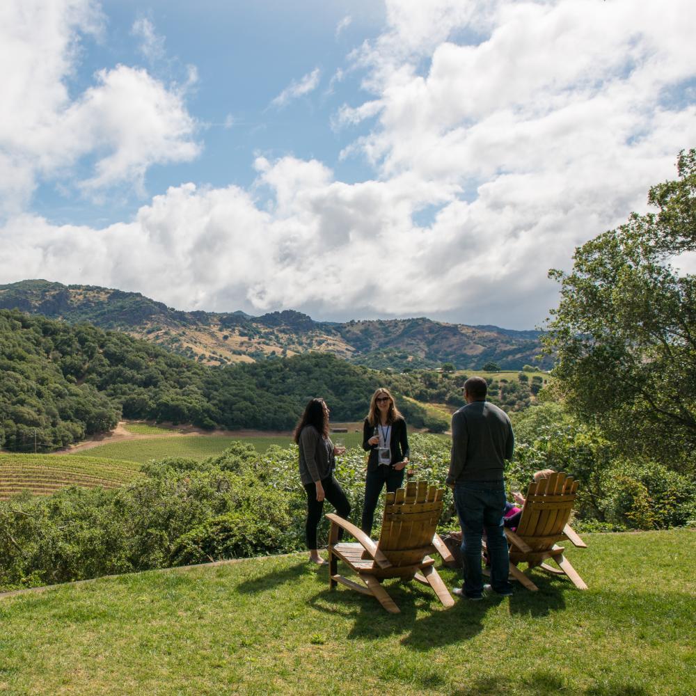 Group at outdoor Napa Valley winery tasting
