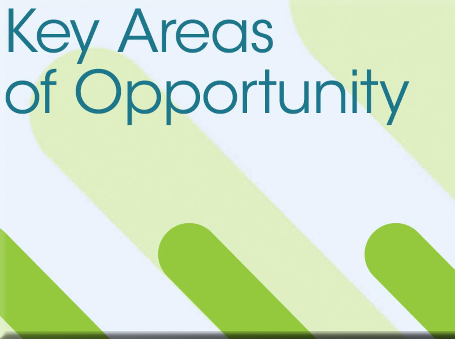 Key Areas of Opportunity