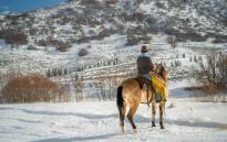 Man sitting on a horse in winter