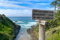 A wooden sign points to different coastal attractions. In the background is a small beach and blue skies.