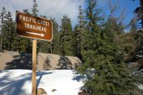 Pacific Crest Trailhead Sign by Sally McAleer