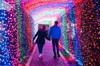 Village Green Light Tunnel with Couple
