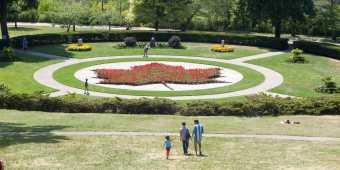 The maple leaf garden at Toronto's High Park in summer