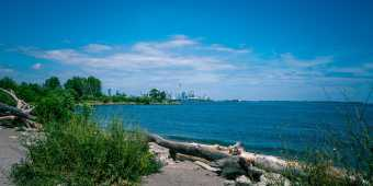 View of the Toronto Skyline from Humber Bay Shores