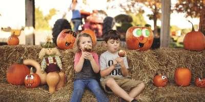 Joe Huber's Fall Kids