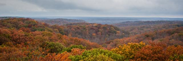 View of the Charles C. Deam Wilderness from the Hickory Ridge Fire Tower during fall