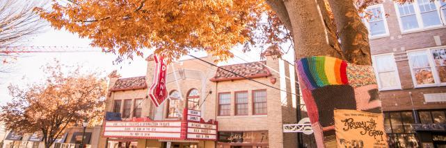 fall downtown bloomington