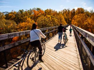 Great Allegheny Passage Fall