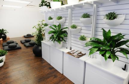 Wall of plants with meditation pillows in backgroun