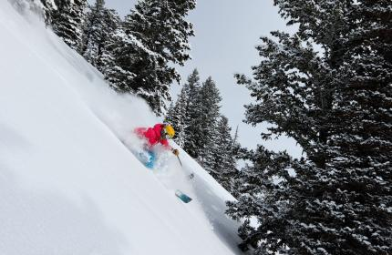 Woman skiing down steep powder field