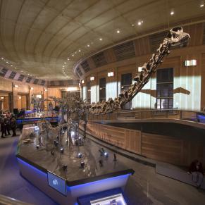 Cincinnati Museum Center Dino Hall