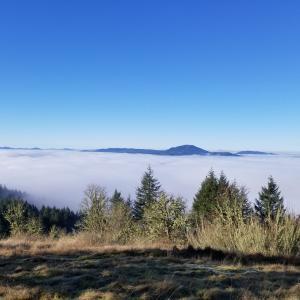 Hiking Trails Eugene Cascades Amp Oregon Coast