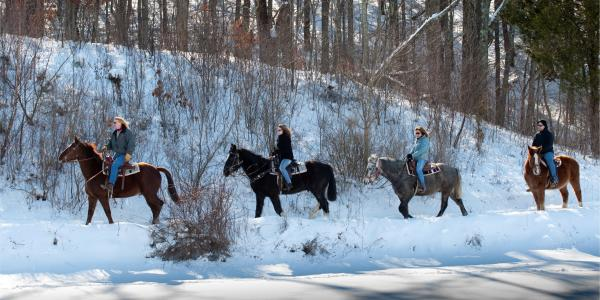 Things to Do in the Poconos | Outdoor Adventure, Waterfalls