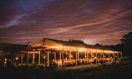Farm to Table Harvest Dinner at City Roots