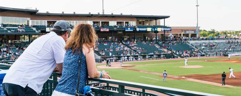 fans_at_baseball_game_Columbia_Fireflies