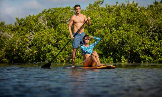 Paddleboarding together is a romantic adventure.