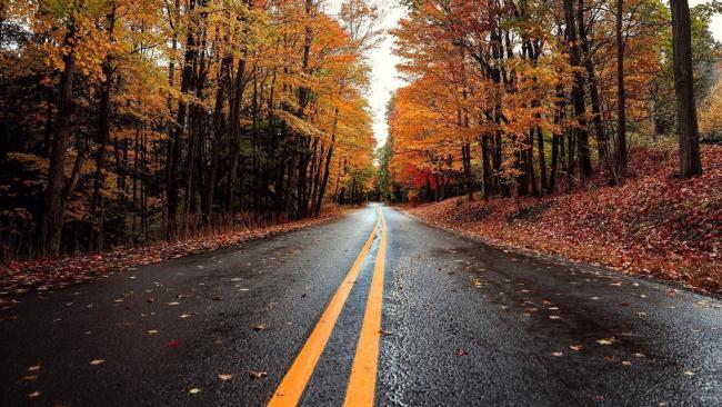 Fall Drives