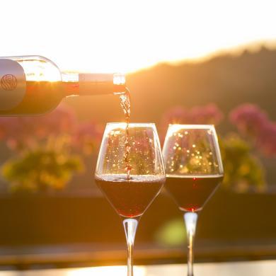 Seneca Wine