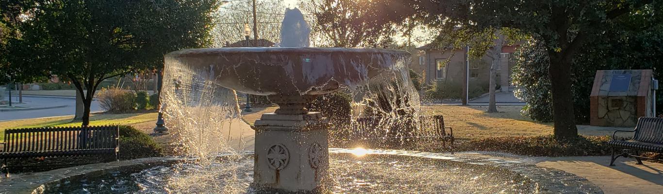 Sun shining through trees behind Mitchell Park fountain