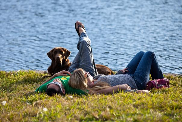 a couple laying in the grass with their dog along the banks of Lake Eola