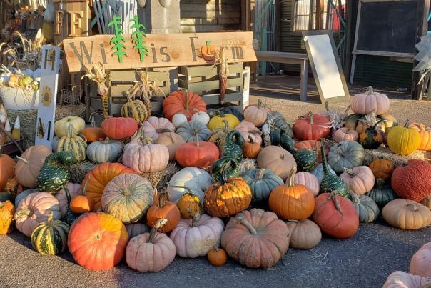 Highland Yard Vintage Market - Fall