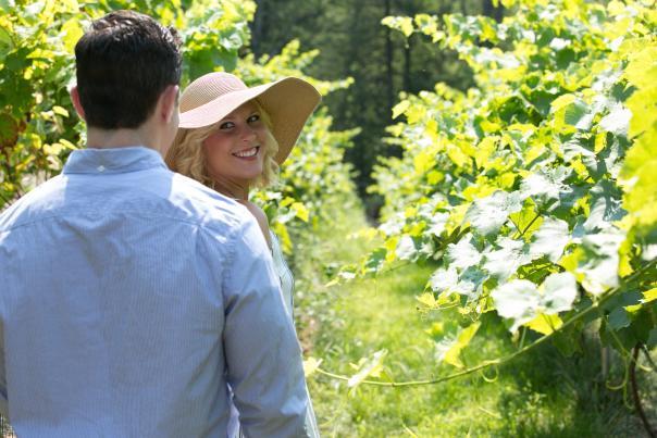 Vineyards in the Pocono Mountains