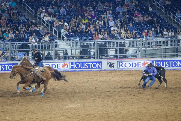 TTD_Western_H_ART-Rodeo-MAIN