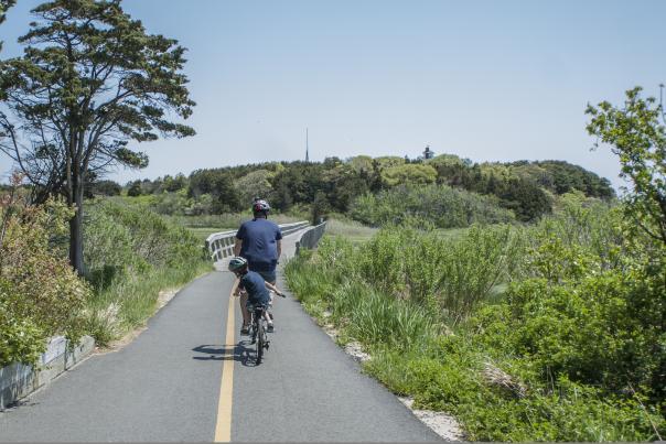 Bike Cape Cod