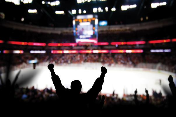 fans celebrating at a hockey game
