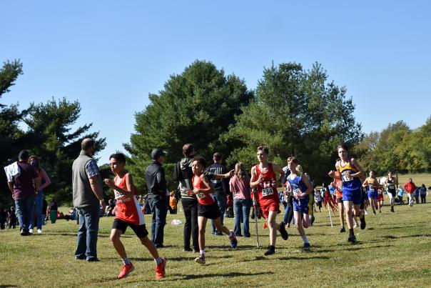 runners in a cross country event