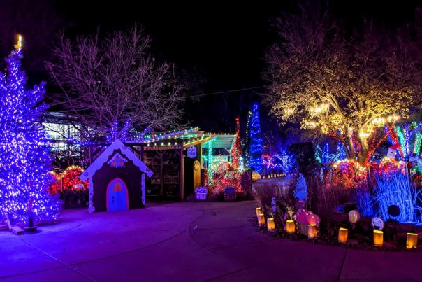 Village at Botanica Illuminations 2020