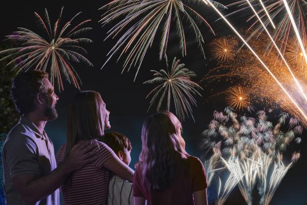 A family watching a fireworks show over Orlando.
