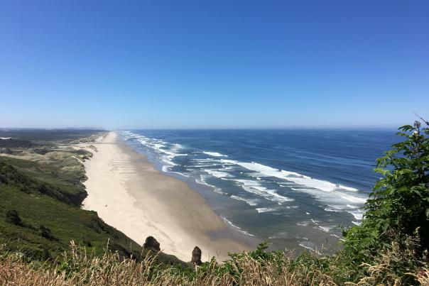 Highway 101 Oregon Coastline by Philis McLennan