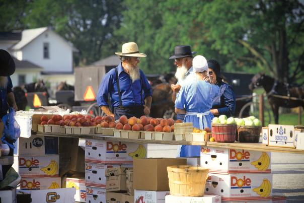 Amish in Elkhart County