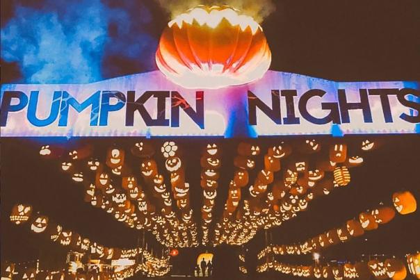 Pumpkin Blog Pumpkin Nights Entrance