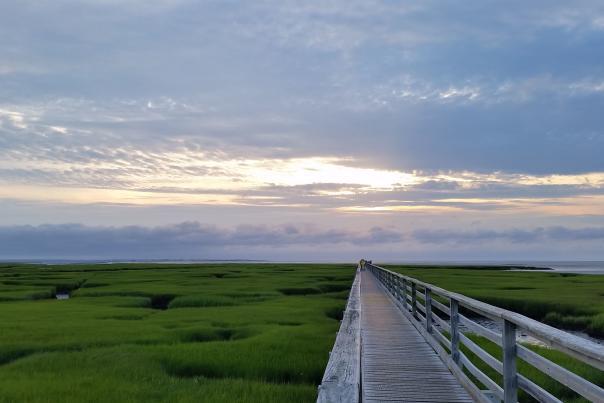 Gray's Boardwalk