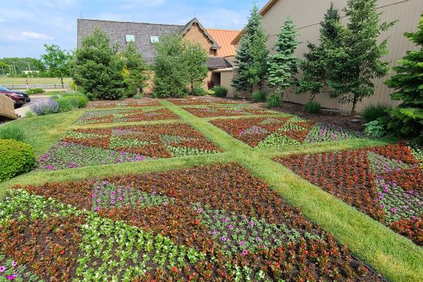 Lintons 2021 Planting