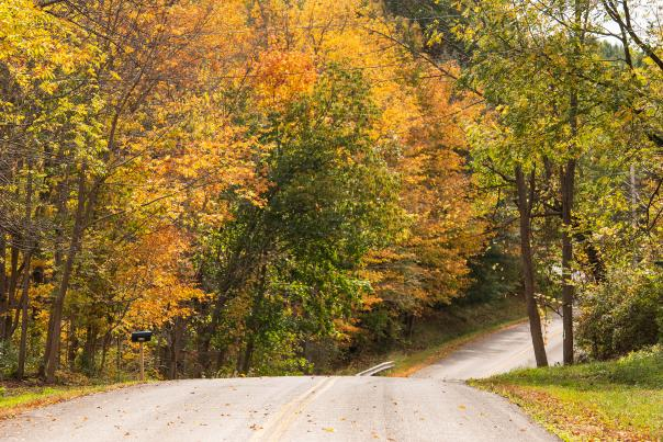 A fall scenic drive to the Finger Lakes