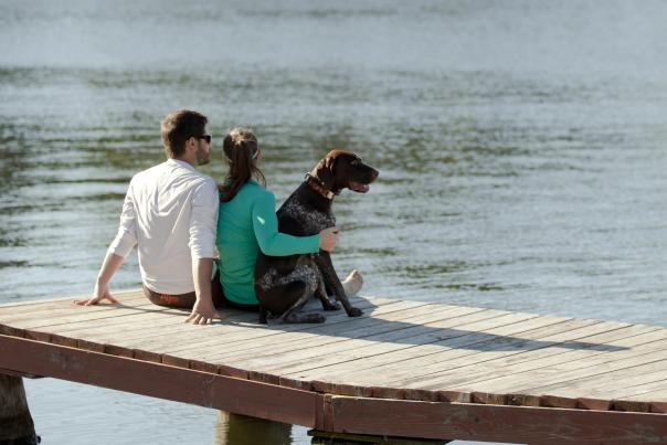 Dog on Dock
